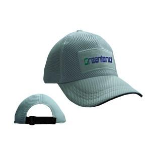 GL6647 cap